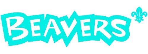 newbeaver3